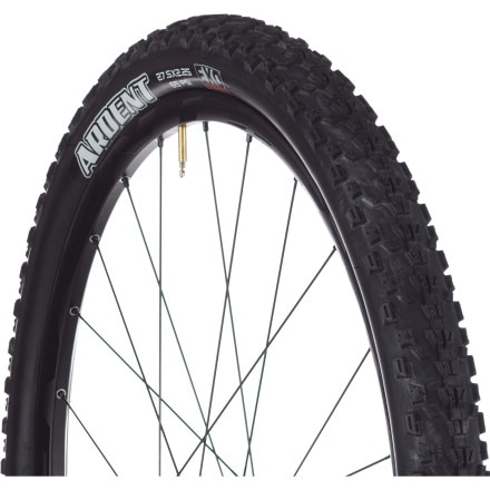 Maxxis  Ardent EXO Tire - 27.5in