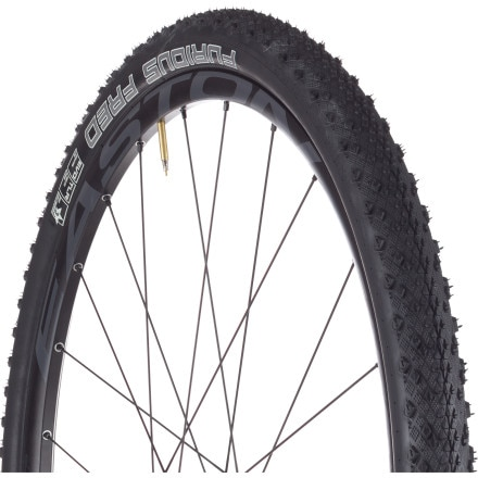 Schwalbe Furious Fred Evo TL Ready Tire - 29in
