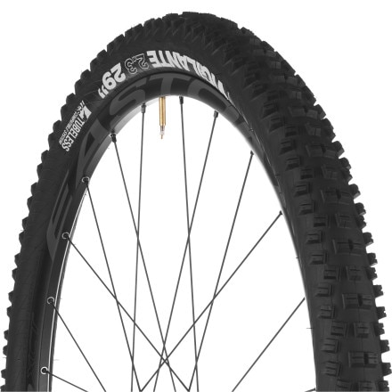 WTB Vigilante TCS Tire - 29in
