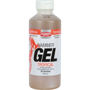Hammer Nutrition 20 oz Energy Gel