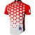 Pearl Izumi Red Commemorative Jersey Back