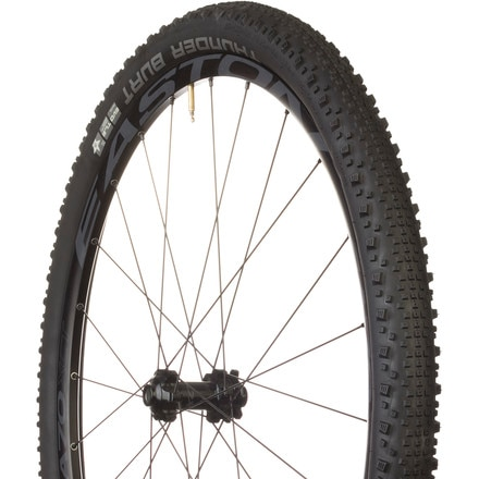 Schwalbe Thunder Burt Tire - 29in