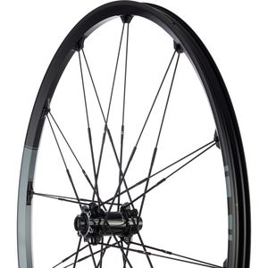 Cobalt 2 29in Wheelset