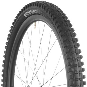e*thirteen components TRS Race Tire - 29in