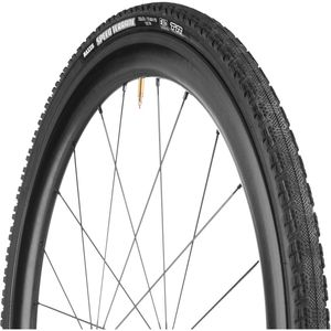 Maxxis Speed Terrane EXO/TR Tire - Clincher