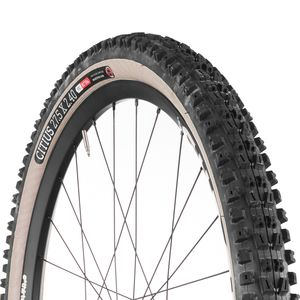 Onza Citius Skinwall Tubeless Tire - 27.5in