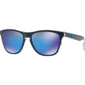 Oakley Frogskins Urban Commuter Collection Sunglasses